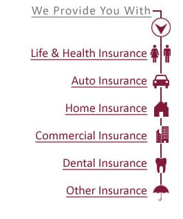 Bologna Insurance Agency